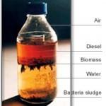 Fuel Contamination